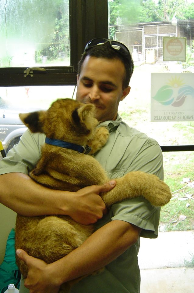 Vazquez with a lion cub.
