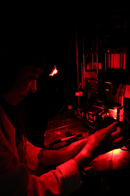 El-Quessny conducting an experiment while using a red headlamp, so as to not stimulate the mouse retina. Photo: Ray Cayetano.
